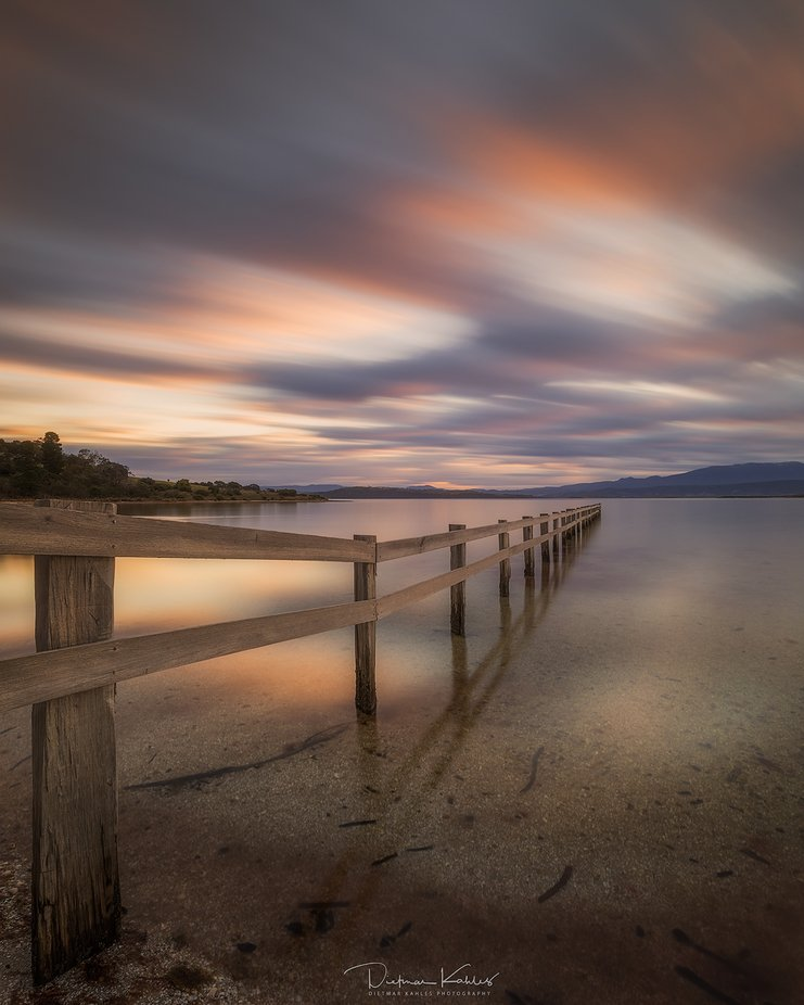 Don't fence me in by lake_of_tranquility - Image Of The Month Photo Contest Vol 37
