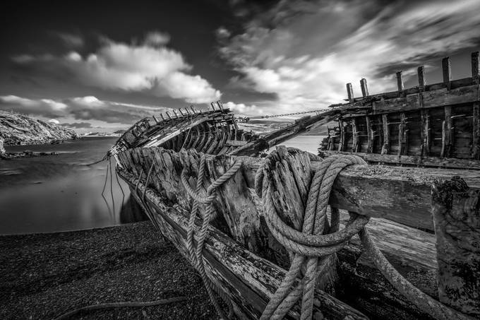 fruitful bow bw (1 of 1) by ireid195 - My Best New Shot Photo Contest