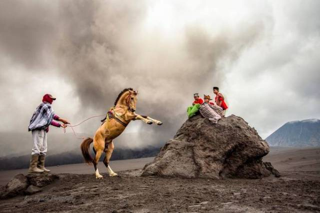 together with horses by kunriyanto - My Best New Shot Photo Contest