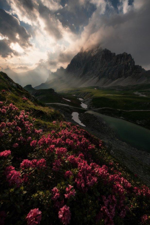 Meja by Mattia_Bertaina - My Best New Shot Photo Contest
