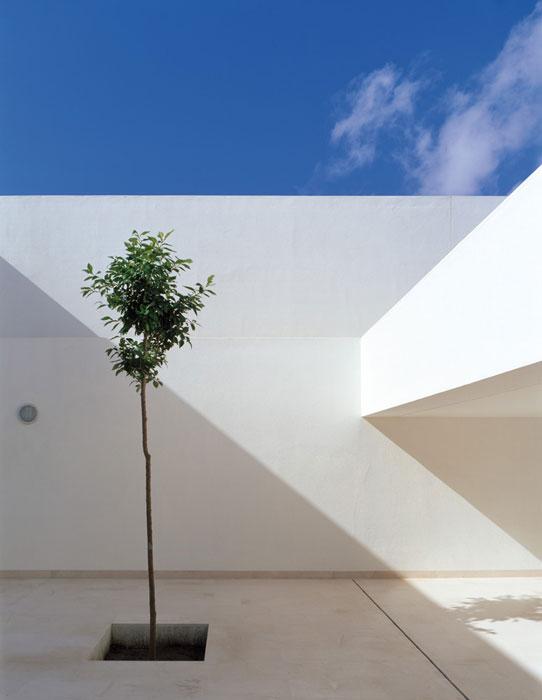 Casa_Guerrero-12