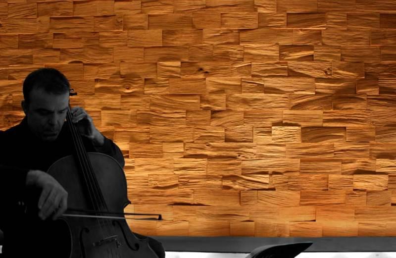 Ξύλινα πάνελ για τους τοίχους