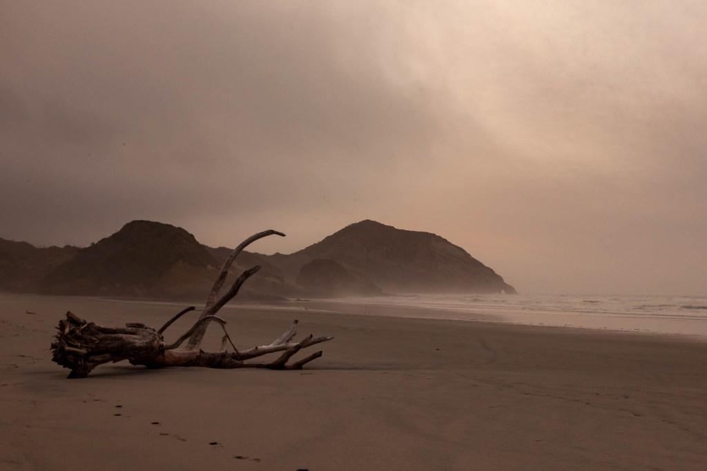 Wharariki Beach II