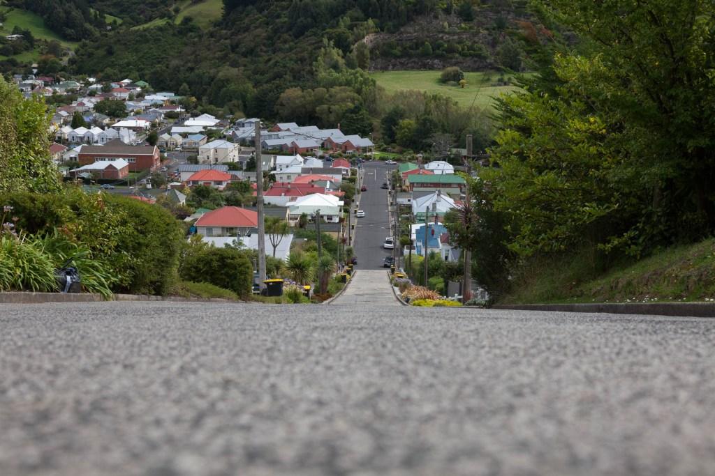 Baldwin Street - Steepest Street of the World