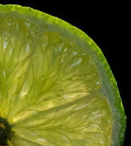 Jillian Koernich_Lime Slice