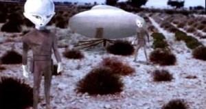 Representação do evento de paralisia sofrido pela testemunha no Caso Valensole, de 1o. de julho de 1965 em um campo de alfazema na França.