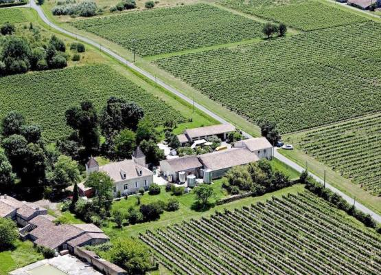 winery and castle on sale Bordeaux