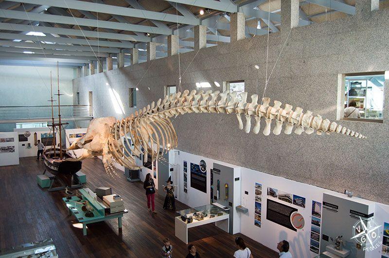 Museo del Mar de Galicia: actividades en Navidad - Vigopeques