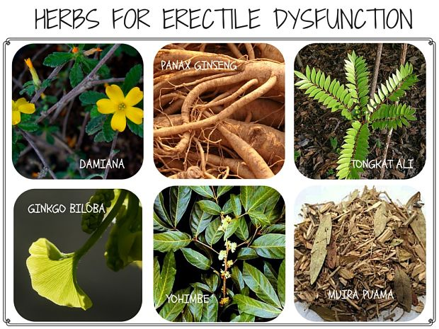 herbs for erectile dysfunction