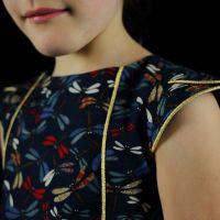 Libellules et passepoil doré (Camélice pour les fêtes)