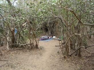 Mullikulam-villagers-forced-to-set-up-in-jungle-Malankaadu-June-2012-pic-via-NAFSO
