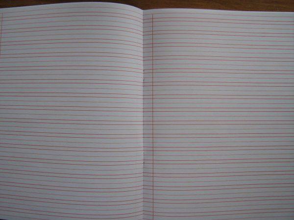 #46l Narrow Ruled Notebooks Letter Sized - 50 Books Pkg