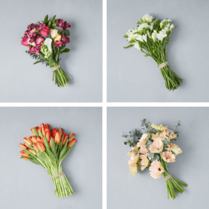 four bouquets of flowers that are pink white orange red and peach made by bouqs