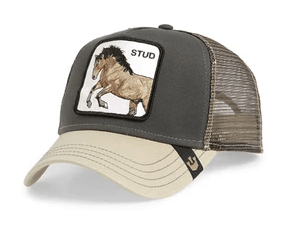 Goorin 'stud' trucker style baseball cap from Grand Hatters