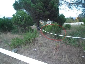 Darrera els arbustes assenyalats en vermell ha aparegut el cos