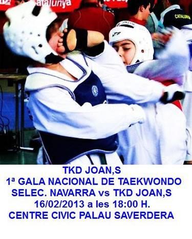 gala_taekwondo