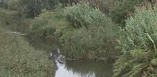 Riu Muga a Castelló d'Empúries