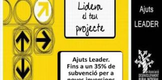 Ajuts Leader