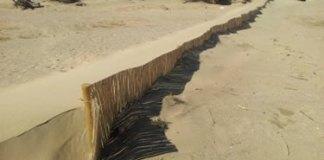 Sistemes dunars de les platges de l'Empordà