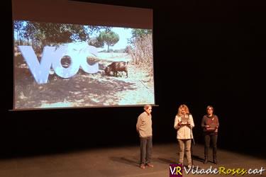 VOC, Premis i Mostra d'Audiovisual en català
