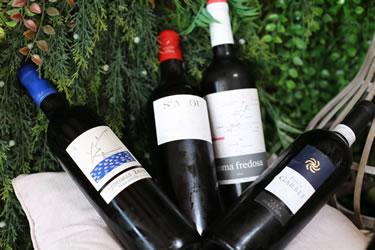 Els vins del Draulic