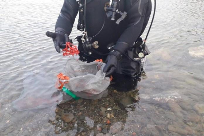 Extracció il·legal de corall vermell