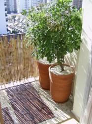 Sacada com deck da Butzke e revestimento de bambu