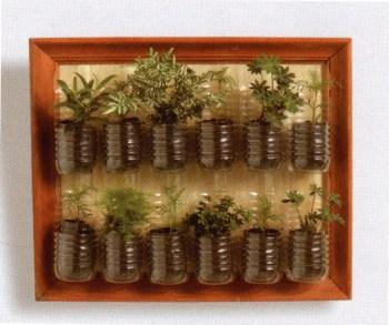 Horta de parede feita com garrafas de óleo de cozinha