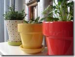 Horta de temperos em vasos de cerâmica