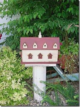Um verdadeiro condomínio de passarinhos