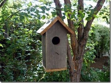 Mais um modelo bem simples para os passarinhos fazerem o ninho