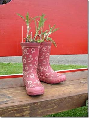 A bota furada é perfeita para um pé de salsinha