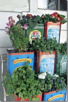 Latas de azeite recicladas em vasos de flores