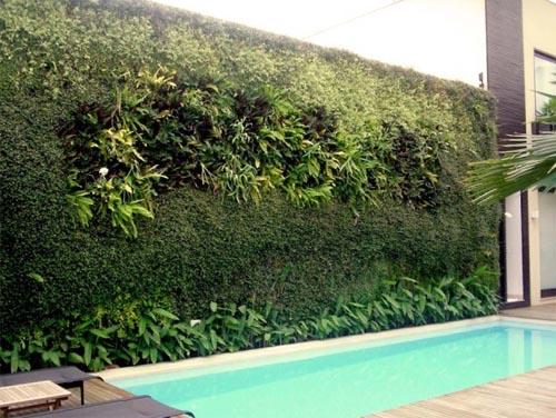 Jardim vertical dá vida ao spa