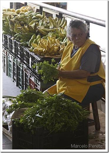 Senhora no Mercado Público amarrando maços de cheiro verde