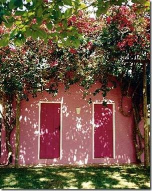 Trepadeiras emolduram as portas da casa