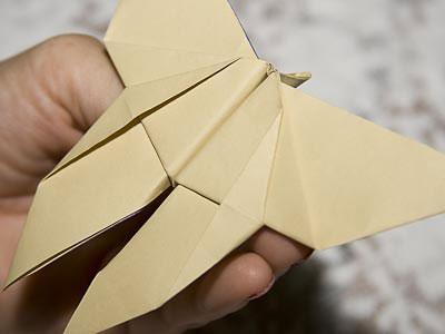 A borboleta de origami está pronta
