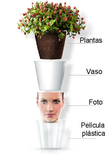 Como é montado o vaso com película protetora