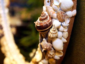 Quando as conchas grande tiverem colado, cubra os espaços vazios