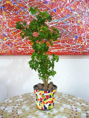 Vaso de plástico decorado com mosaico, passo a passo