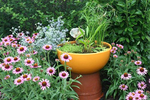 Jardim aquático com fonte para um ambiente fresco e agradável