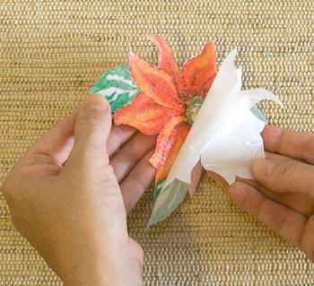 Remova o papel siliconado