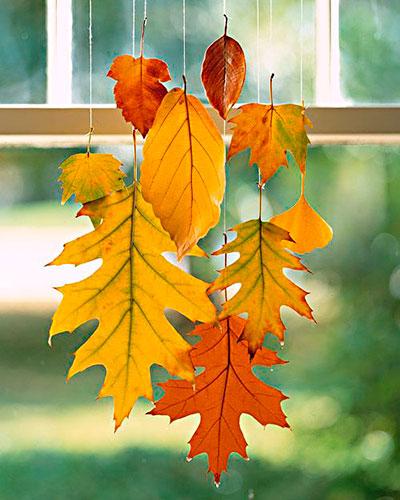 Folhas secas do outono preparadas com cera