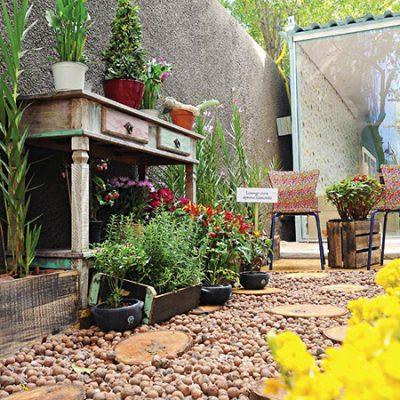 Consumo consciente e ideias para um jardim