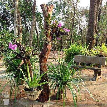 Jardim com toque artesanal
