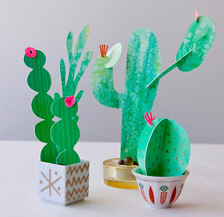 Cactus e suculentas em papel cartão