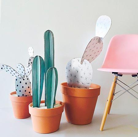 Cactus e suculentas de papelão