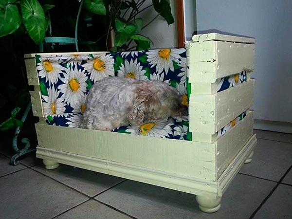 Cama para cães com caixotes