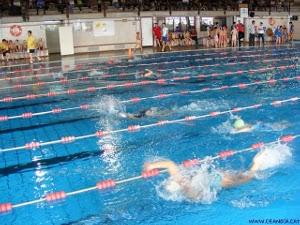 escolars de natacio foto CEAnoia