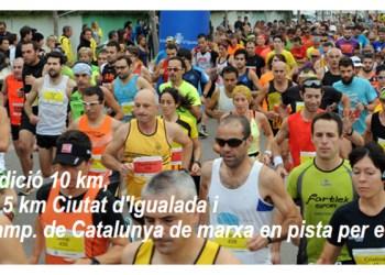 Mitja Marató 2015 foto web CAI V02